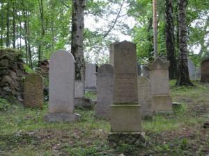 Židovský hřbitov Dřevíkov