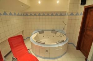 wellness - hotel Mánes