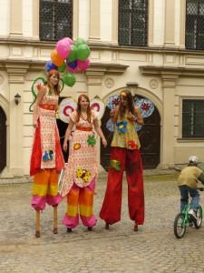 festival-sbirka-motylu-4